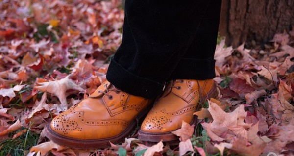 Brown Shoes with Black Pants
