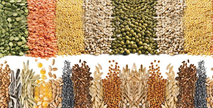 What is soluble fiber